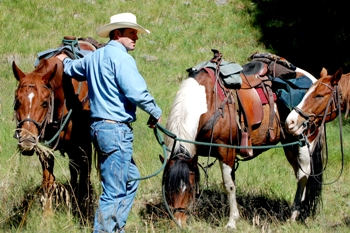 This photo of a working rancher was taken by Gayle Lindgren of Phoenix, Arizona.
